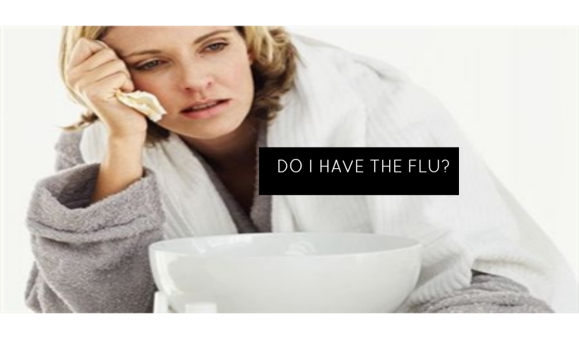 Do I Have the Flu?
