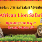 We Go Wild at African Lion Safari + Contest Ahead!